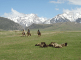 West Tian Shan Interstate Biodiversity Project (2001 & 1996)